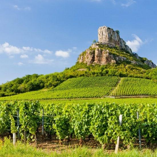 Burgund und Freie Grafschaft