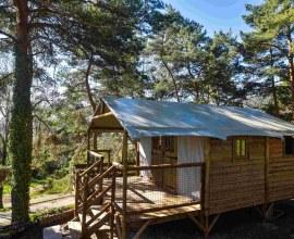 Tente lodge dans la forêt au Camping Le Chanset 3 étoiles Auvergne-Rhône-Alpes - Puy-de-Dôme | Label Camping Qualité