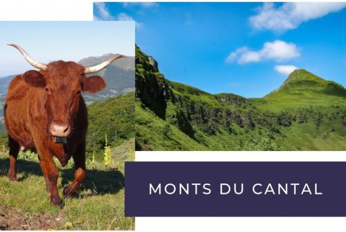 camping monts du cantal
