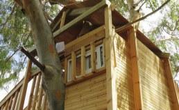 location cabane en bois arbres Camping Qualité France