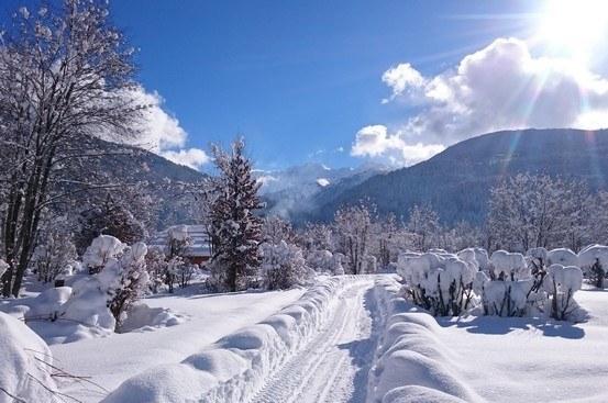 L'hiver en camping - allée enneigée - camping Savoie hiver