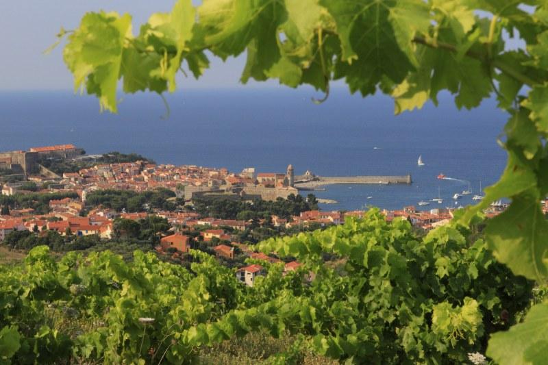 Région Languedoc-Roussillon Camping Qualité