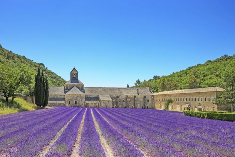 Abbaye Notre Dame de Sénanque dans le Vaucluse en région Provence-Alpes-Côte d'Azur Camping Qualité