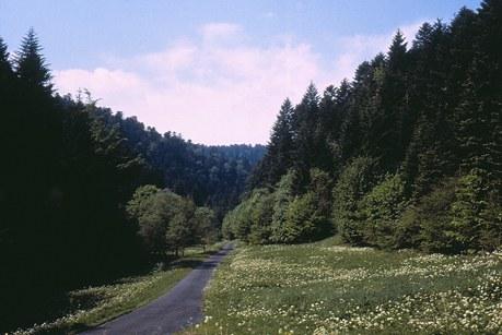 Région Lorraine Camping Qualité - Vosges