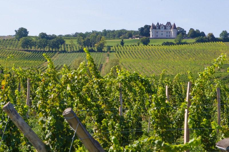 Château et vignoble en Dordogne Camping Qualité Région Nouvelle Aquitaine - Périgord