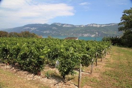 Département Isère Région Auvergne-Rhône-Alpes Camping Qualité