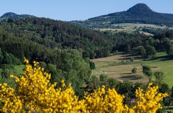 Département Haute-Loire Région Auvergne-Rhône-Alpes Camping Qualité - Vaubarlet