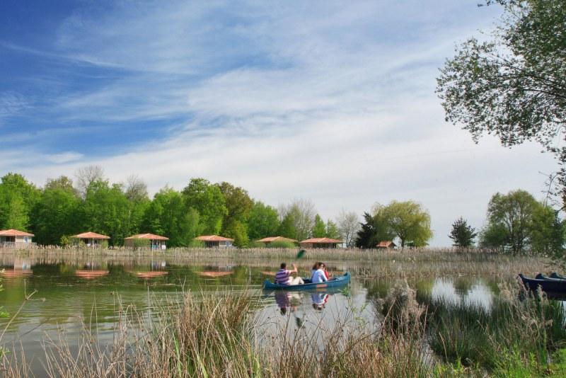camping bord d'étang Région Centre-Val de Loire - Loire - Les Bois de Bardelet - Camping Qualité