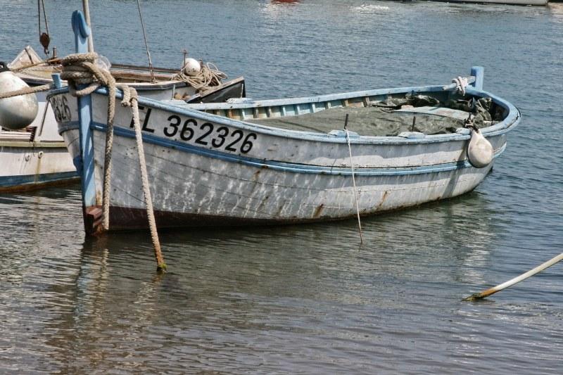 Barqde pêche Îles d'Or dans le Var - Camping Qualité PACA Var