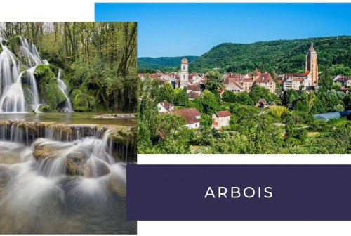 camping arbois