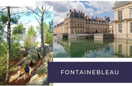 Incontournable depuis votre camping à Fontainebleau